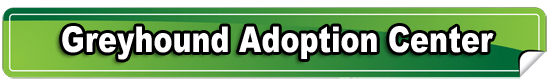 long-rectangle-banner-bar-green-greyhound-adoption-center